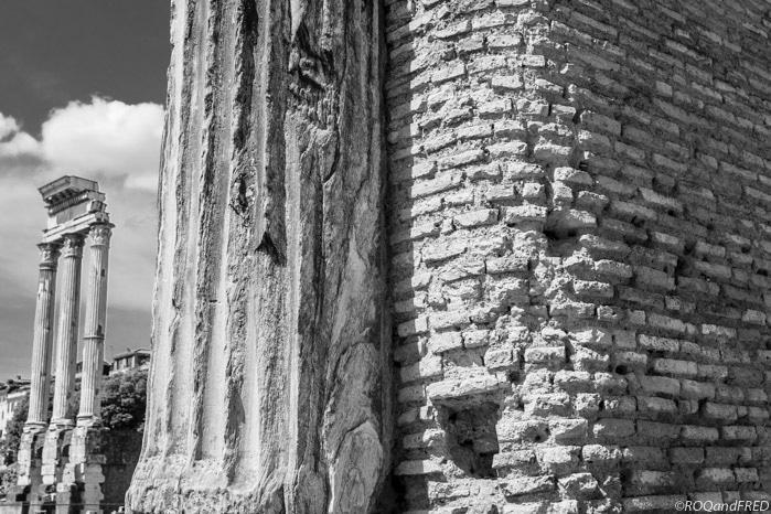 rome-forum-004