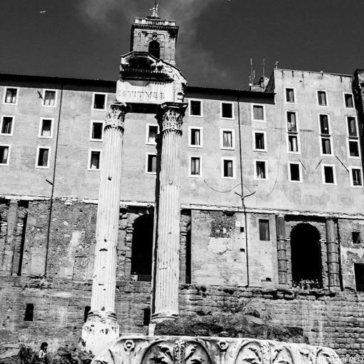 rome-forum-015