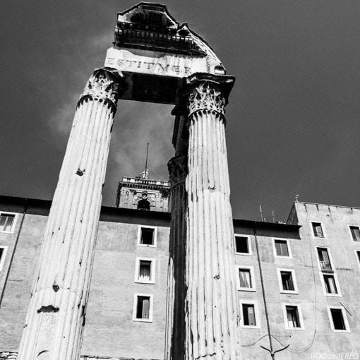 rome-forum-016