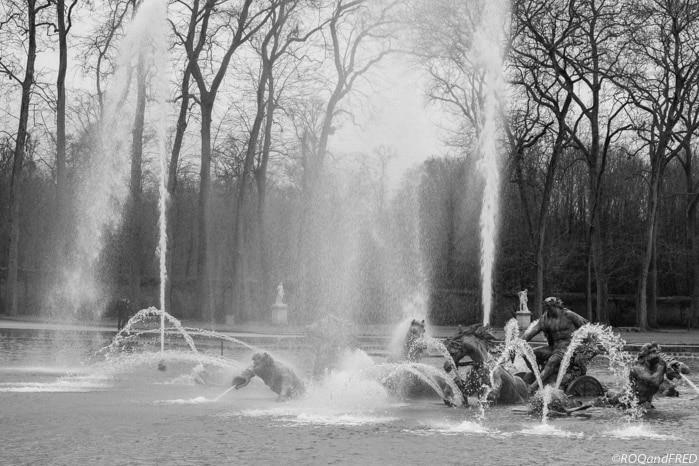 Verticale des arbres et des jets d'eau du bassin d'Apollon