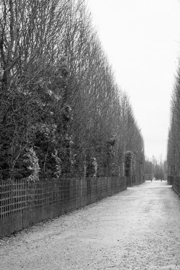 jardins-versailles-051