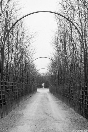 jardins-versailles-054