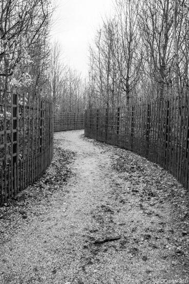 jardins-versailles-072