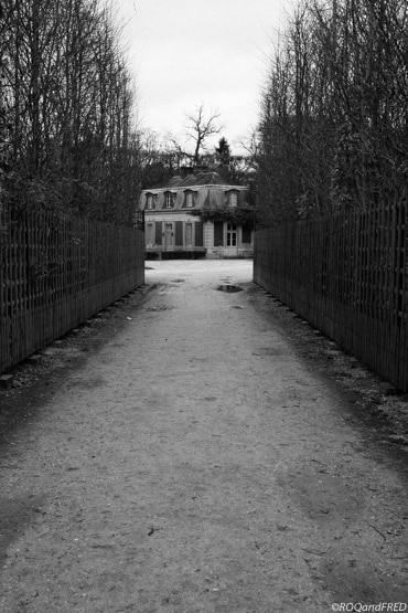 une contre-allée dans le parc du château de Versailles