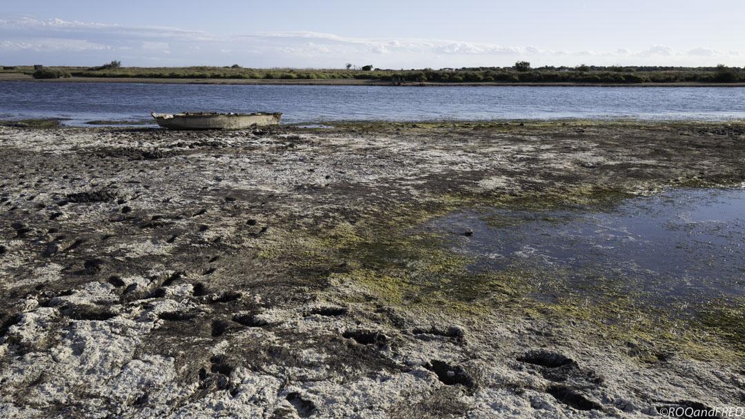 à Portiragnes intrication entre la mer, les étangs et la station d'épuration
