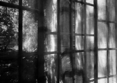 Jardins, vitres et reflets